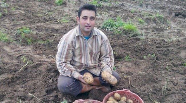 Patates üreticisini sevindirdi