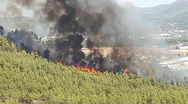 Fethiye'de yangın! Ekipler alarm durumunda